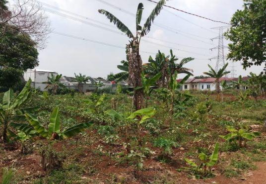 jual tanah 3000 meter ceringin ragajaya bojong gede bogor dinarafi property 085693123544