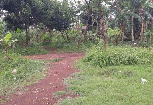 jual tanah cilangkap cipayung jakarta timur dinarafi property 085693123544